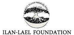 il_foundation_logo